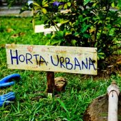 SVE | Sustainable Urban Gardening | Reino Unido | Newcastle | 6 meses | CANDIDATURA ATÉ 01 MAR.